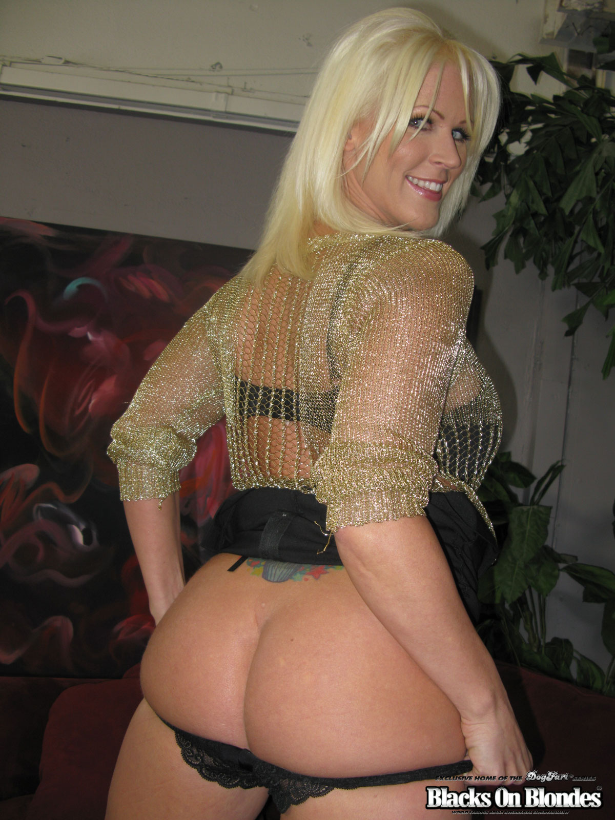 Join. All kaylee brookshire housewife your business!